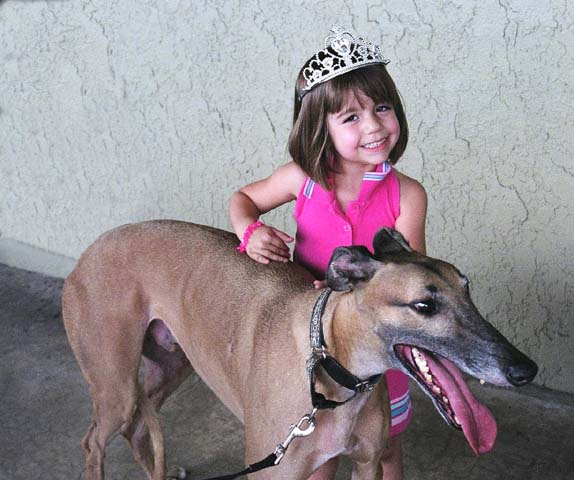 Carlin, a young girl, is petting Fargo, a large fawn Greyhound with a black mask.  She is wearing a pink princess costume with a tiara.