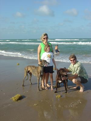 Rio, a brindle Greyhound, Bambi, a black lab cross, and three members of the Hanloh family pose on Padre Island.