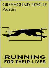 Greyhound Rescue Austin - Running for their lives